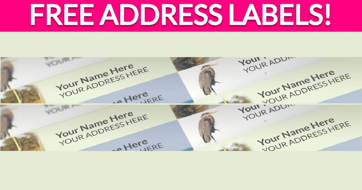 Free Address Labels Samples By Mail