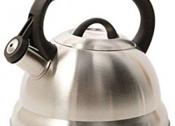 Mr. Coffee Stainless Steel Whistling Tea Kettle only $6 (was $19.99)