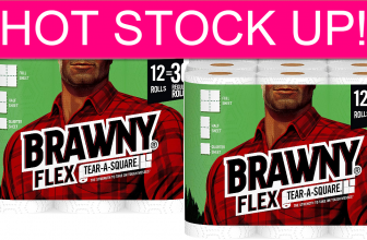 Brawny Paper Towel Big Packs – STOCK UP DEAL!