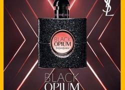 FREE Sample of YSL Black Opium Fragrance