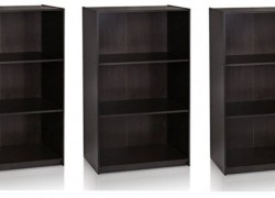 3-Tier Bookcase Storage Shelves ONLY $21 !