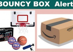Bouncy Box! Basket Ball Toy – SO FUN!