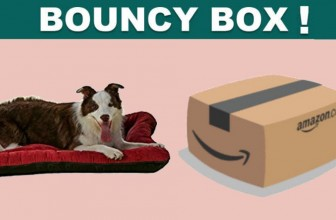 EVERY 400th PERSON WILL Win A NEW Dog Bed!
