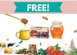 Easy ! Free Sample of Celestial Seasonings® Tea !