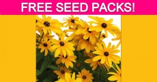 Free Butterfly or Bee Pollinators Seed Packs!