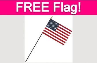Free American Flag on May 29th!