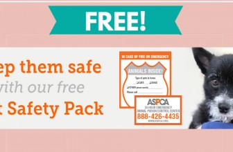 FREE Pet Safety Kit By Mail !