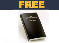 FREE New Testament Recovery Bible
