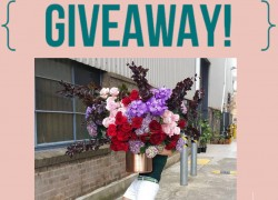 Win a $200 1-800 Flowers eGift Card!
