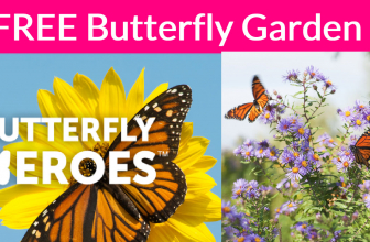 TOTALLY FREE Butterfly Heroes Garden!