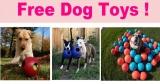 Free Dog Toys !