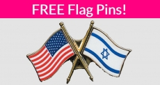 SUPER EASY! Free Flag Pin!