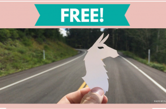 FREE Llama Sticker = HOW FUN!
