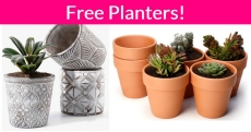 Free Planters By Mail ! So Pretty!