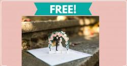 Free Sample of Lovepop Wedding invitations !
