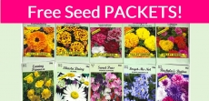 Zarbee's Seeds for Bees – Free by Mail!