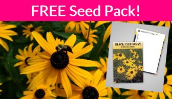 SUPER EASY ! Free Black Eye Susan Seeds!