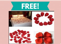 Free Silk Rose Petals By Mail!
