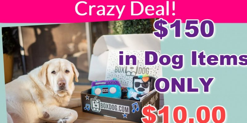 $150 In Dog Goodies for ONLY $10 ! CRAZY!