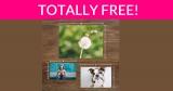 10 Free 4×6 Photo Prints ! Great Gift Idea!
