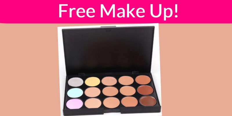 Free Natural Professional Concealer Palette!
