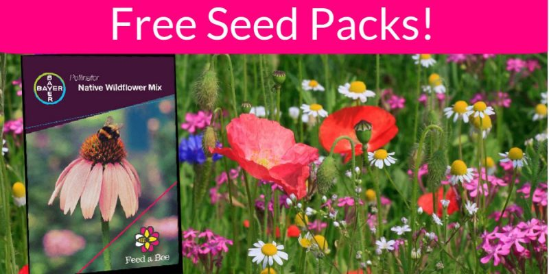 Totally FREE Wildflower Seed Packs! EASY!