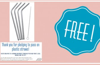 FREE Stainless Steel Reusable Straw