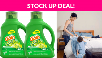 Gain Laundry Detergent 2-Pack