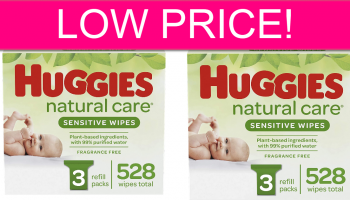 LOW PRICE! Huggies Wipes 528 Count! FREE Shipping!