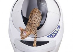 [ WOW! ] Enter to Win a Litterbox Robot!!