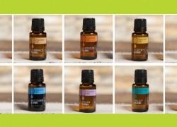 FREE SAMPLE of essential Oils! RUNNNN !