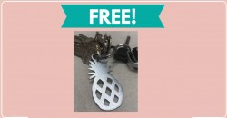 Totally Free Pineapple Keychain By Mail!