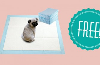 FREE Puppy Training Pads + Pet Waste Bags