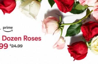 2 DOZEN ROSES ONLY $19.99 OMG!