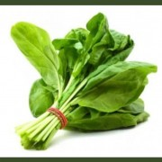 Get a FREE Pack of Spinach Seeds!