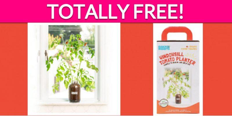 Free Windowsill Planter Kit!