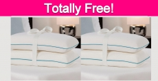 Possible Totally Free Comfort Revolution Pillow!