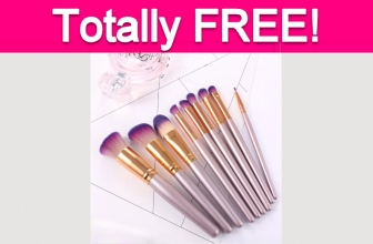 Totally Free Professional Makeup Brushes!