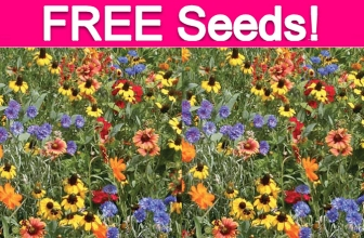 Totally Free Wildflower Seeds!