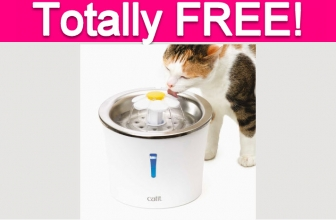 Totally Free Cat Water Fountain!