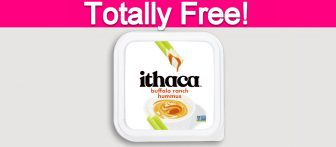 Totally Free Ithaca Hummus!