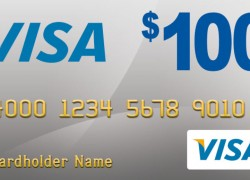 65 WINNERS = ENTER To Win a $100 VISA Gift Card !
