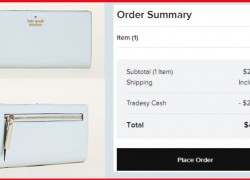 Kate Spade Wristlet / WALLET ONLY $4.85 SHIPPED!