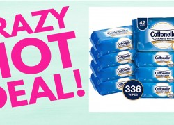 RUNNNNN! Cottonelle Flushable Wipes ONLY $1.24 Ea. SHIPPED!