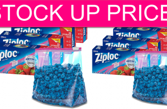 STOCK UP TIME! Hot Price on Ziploc Storage Bags!