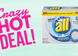All Powder Laundry Detergent  – 40 Loads – ONLY $4.45 !