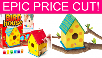 EPIC Price Cut! Made By Me Paint Your Own Birdhouse!