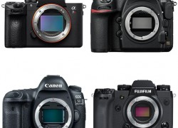 Win Your Choice of Camera!