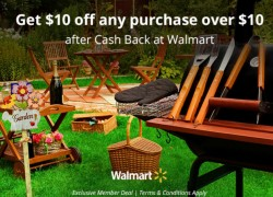 Get A Free $10 Cash Back At Walmart = FREE STUFF!