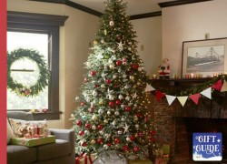 Enter To Win a Christmas Tree! ( Worth $930 ! )